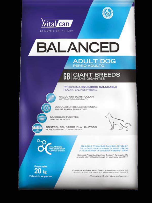 Balanced perro envase adulto gigante