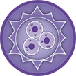 Balanced - Cuidado a nivel celular - Icono