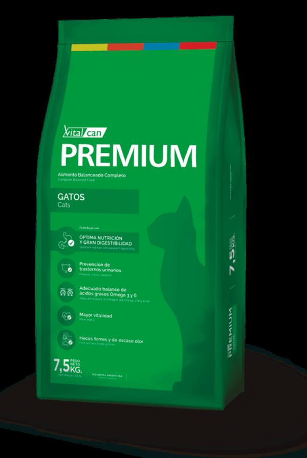 Premium Envase Gato