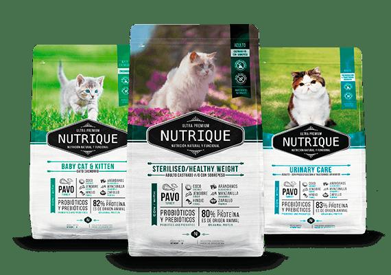 Envase marca nutrique gato