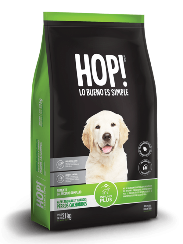 Hop! Perro cachorro raza grande