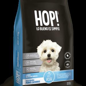 Hop! Perro cachorro raza pequeña