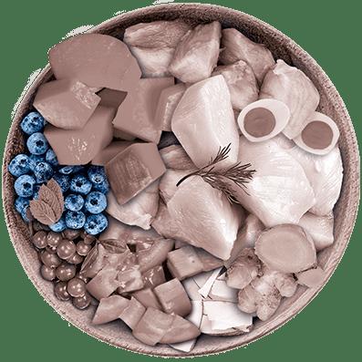 Nutrique - Bowl Gato Ingredientes Arandano