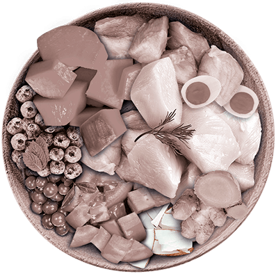 Nutrique - Bowl Gato Ingredientes Blend