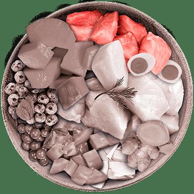 Nutrique - Bowl Gato Ingredientes Cerdo