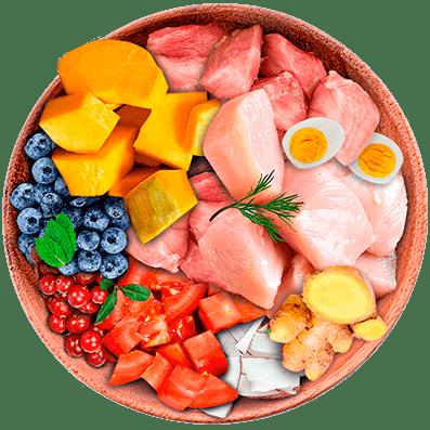 Nutrique - Bowl Gato Ingredientes