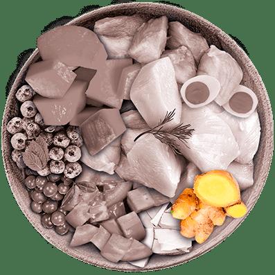 Nutrique - Bowl Gato Ingredientes Jengibre