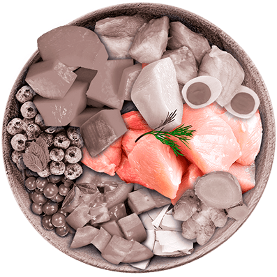 Nutrique - Bowl Gato Ingredientes Pavo