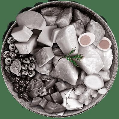Nutrique - Bowl Gato Ingredientes Romero