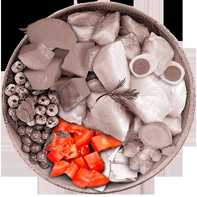 Nutrique - Bowl Gato Ingredientes Tomate