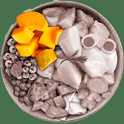 Nutrique - Bowl Gato Ingredientes Zapallo