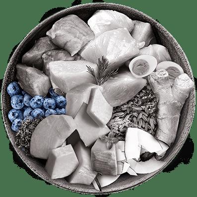 Nutrique bowl ingredientes Arándanos azules