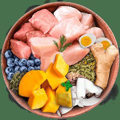 Nutrique bowl ingredientes probioticos