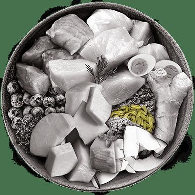 Nutrique bowl ingredientes hinojo