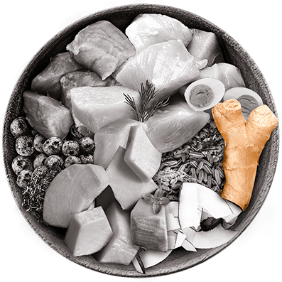 Nutrique bowl ingredientes jengibre