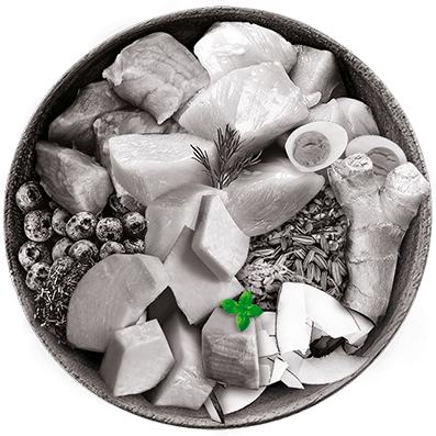 Nutrique bowl ingredientes menta