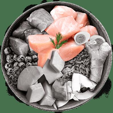 Nutrique bowl ingredientes pavo